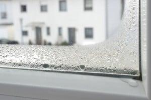 Wie entsteht schimmel feuchtigkeitsmesser