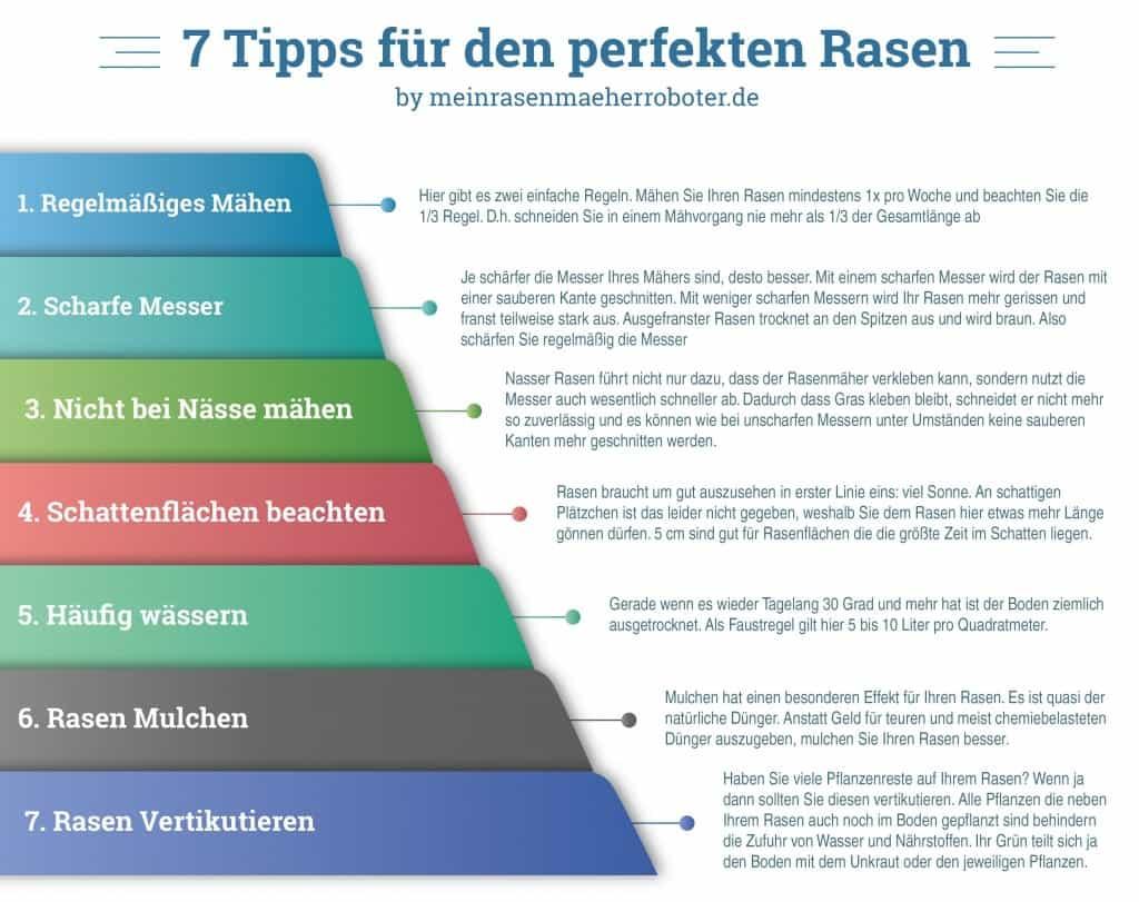 7_tipps rasen