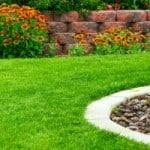 7 Tipps für den perfekten Rasen